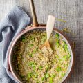Barley risotto with fava beans, pecorino and lemon zest